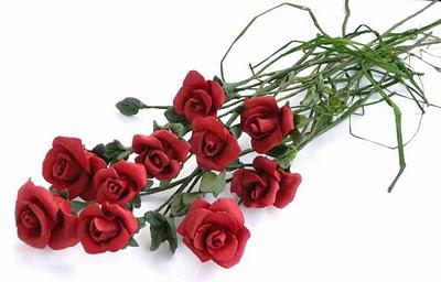 Rosas de pitiminí. Ref.rosaram-03