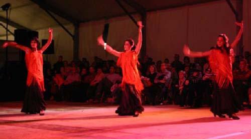 purissima dansa